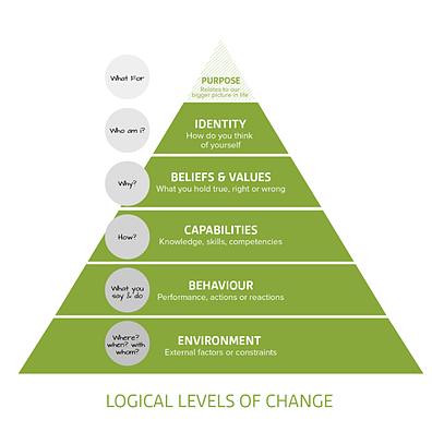 Logical Levels of change